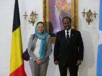 Somali President receives credentials from new Belgium ambassador to Somalia