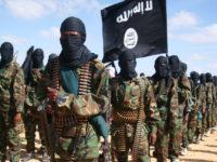 Sarkaal katirsan Al-Shabaab oo isku dhiibay dowladda Soomaaliya. [Sawirka: Archive]