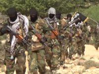 Maleeshiyada ISIS ku sugan Puntland, Soomaaliya. [Sawirka]