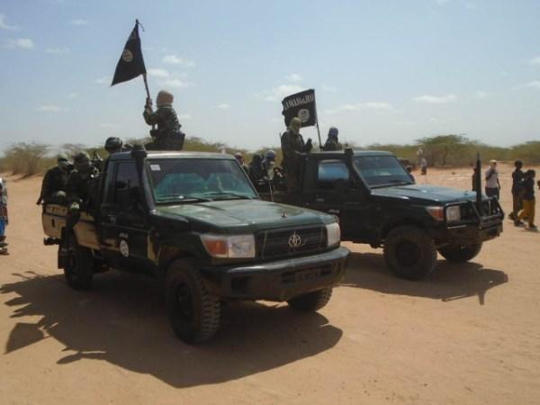 militans-vehicles