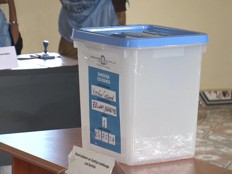 The ballot box[Photo: Archive]