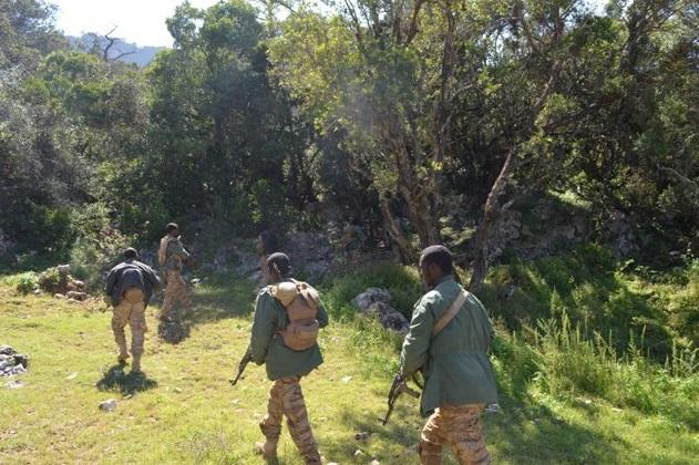 Dagaalka u dhaxeeya Puntland iyo Al-Shabaab ayaa ka bilowday buuraha Galgala sanadkii 2010-kii. [Sawirka: Archive]