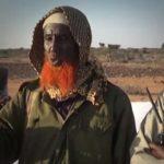 ISIS militants loots livestock in Bari region