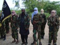 Sawirka: Maleeshiyada Al-Shabaab.