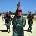 US says airstrike in Somalia kills al-Shabaab militant