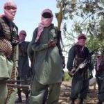 Sargaal katirsan Al-Shabaab oo isku dhiibay ciidamada dowladda Soomaaliya ee gobolka Gedo