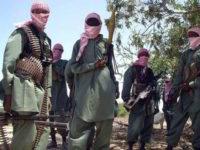 Maleeshiyaad katirsan Al-Shabaab. [Sawirka: AP]