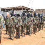 U.S. airstrike kills two Al-Shabab fighters in Middle Juba