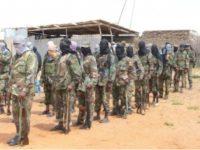Maleeshiyada Al-Shabaab. [Sawirka]