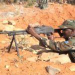 Al-Shabab leader's son killed in Lower Shabelle: army radio