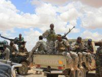 Is mariwaaga ciidan ee u dhaxeeya Puntland iyo Somaliland ee Tukaraq oo galay bishii afraad. [Sawirka]