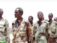 Ciidanka isa soo dhiibay waxay qeyb ka ahaayeen guutada Gacan Libaax oo katirsan ciidamada Somaliland. [Screenshot]