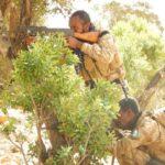 Ciidamada PSF oo sheegay in 41 dagaalyahan oo katirsan Al-Shabaab lagu dilay howlgal ka dhacay Buuraha Caalmadow