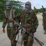 Labo dagaalyahan oo katirsan Al-Shabaab oo lagu dilay duqeyn Mareykanku ka geystay Jubbada Hoose