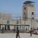 Somaliland oo toogasho ku fulisay xubno katirsan Al-Shabaab markii ugu horeysay